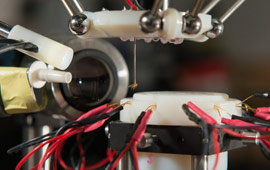 Robot works with fruit fly